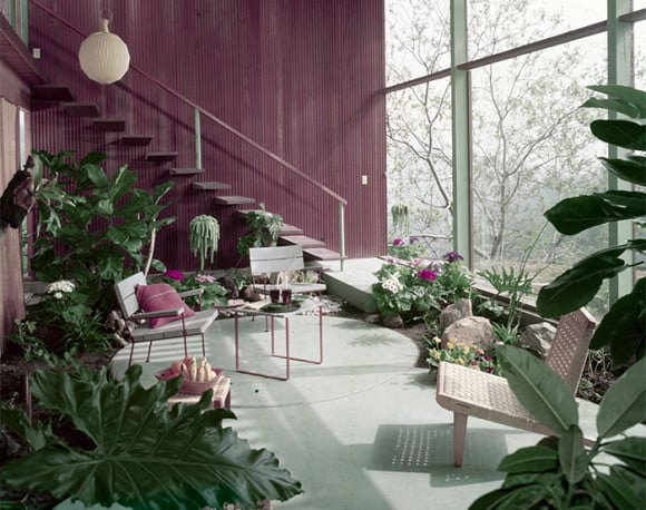 The Knauer house, designed by Rodney Walker, is filled with plants like philodendron. Photo by Julius Shulman,