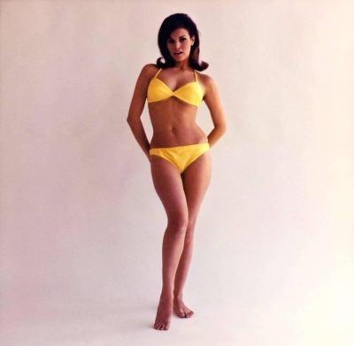 An untitled Don Ortiz photograph of actress Raquel Welch, circa 1965. Offered by